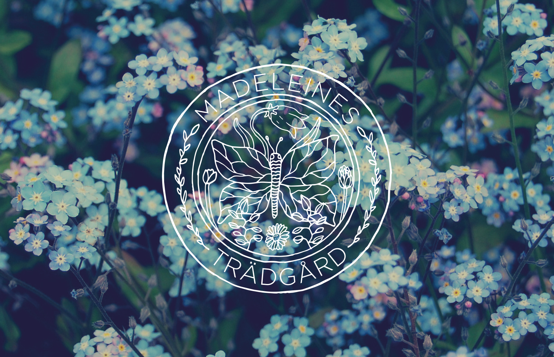 Madeleines Trädgård